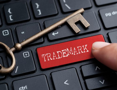 Understanding the China Trademark Database Search