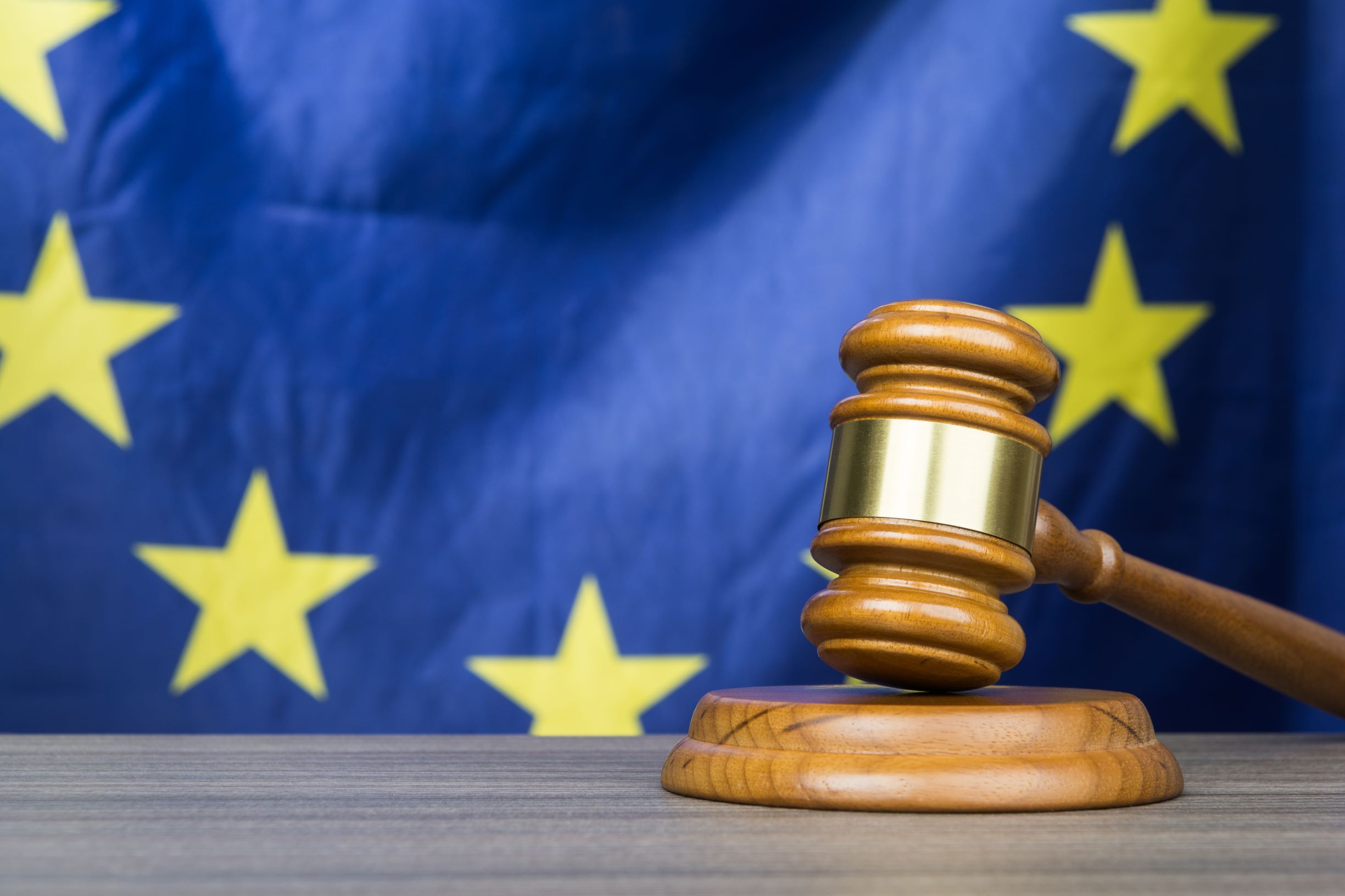 European Union with Gavel