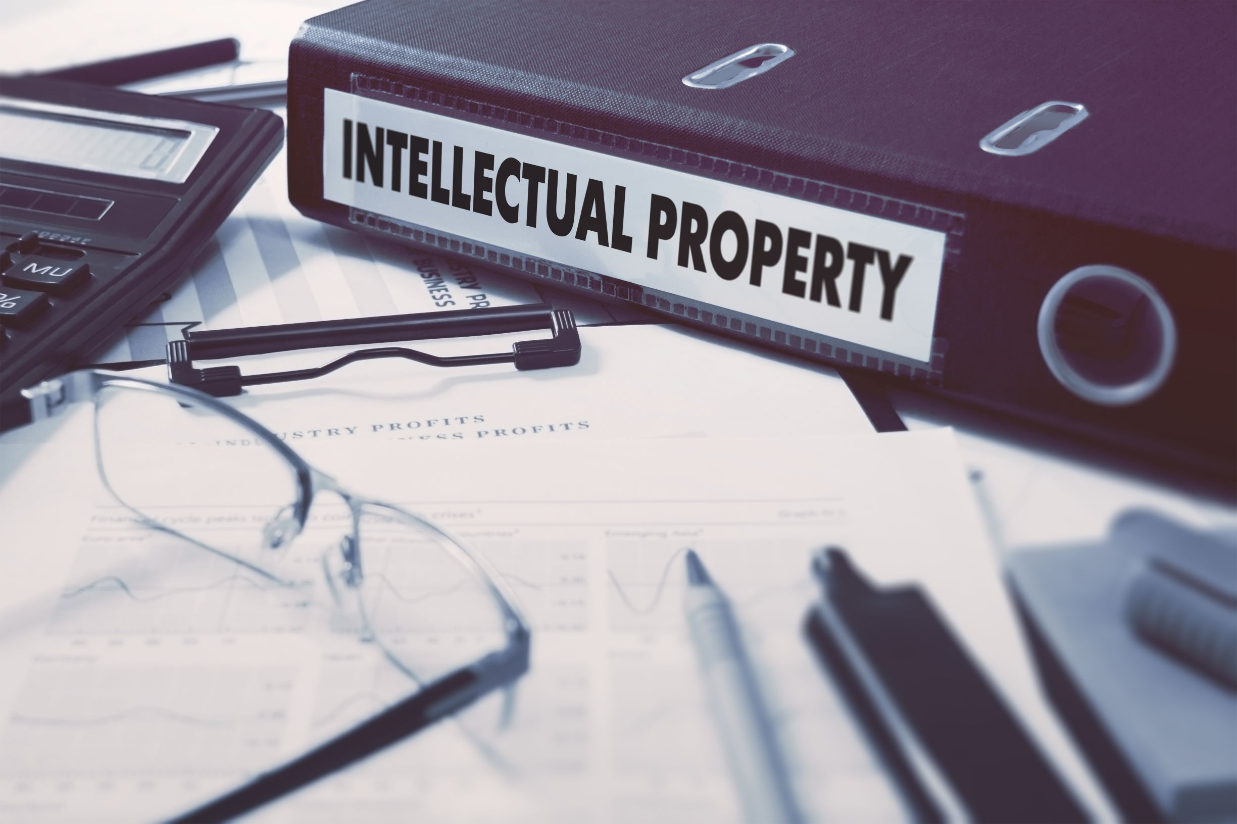Intellectual Property Folder